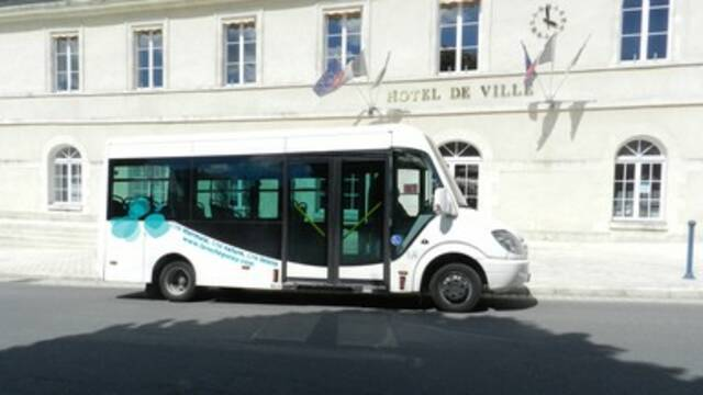 Transport shuttle La Roche-Posay