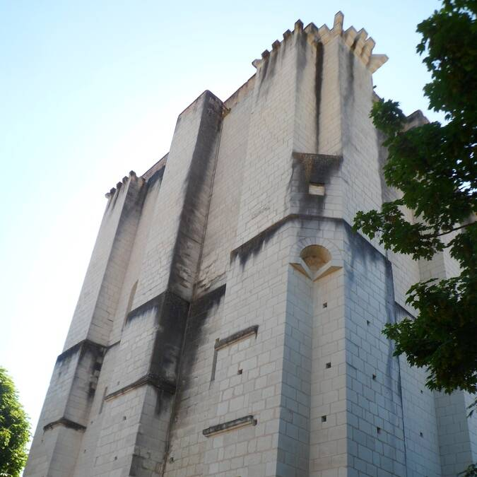Donjon La Roche-Posay
