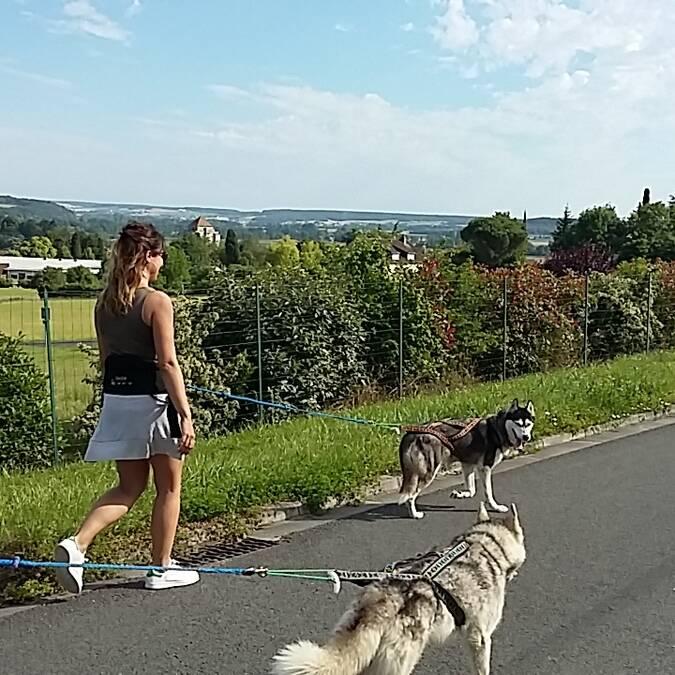 Cani-rando à La Roche-Posay